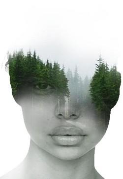 En el Bosque - Antonio Mora