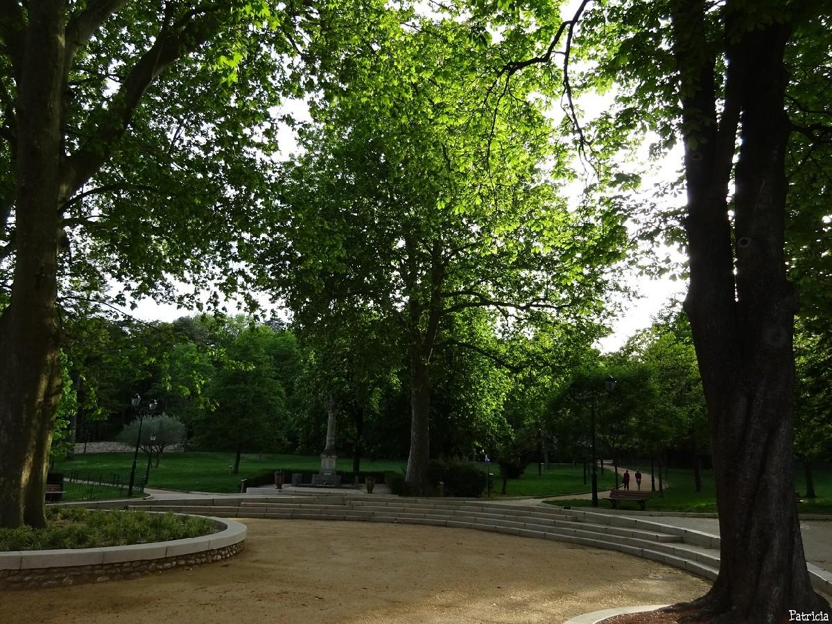 2015 05 02 conf. arbres remarquables Y.Maccagno Anduze (9)