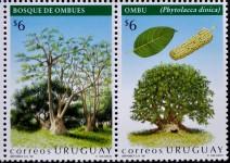 Belombra_Uruguay_  01 © Yanick