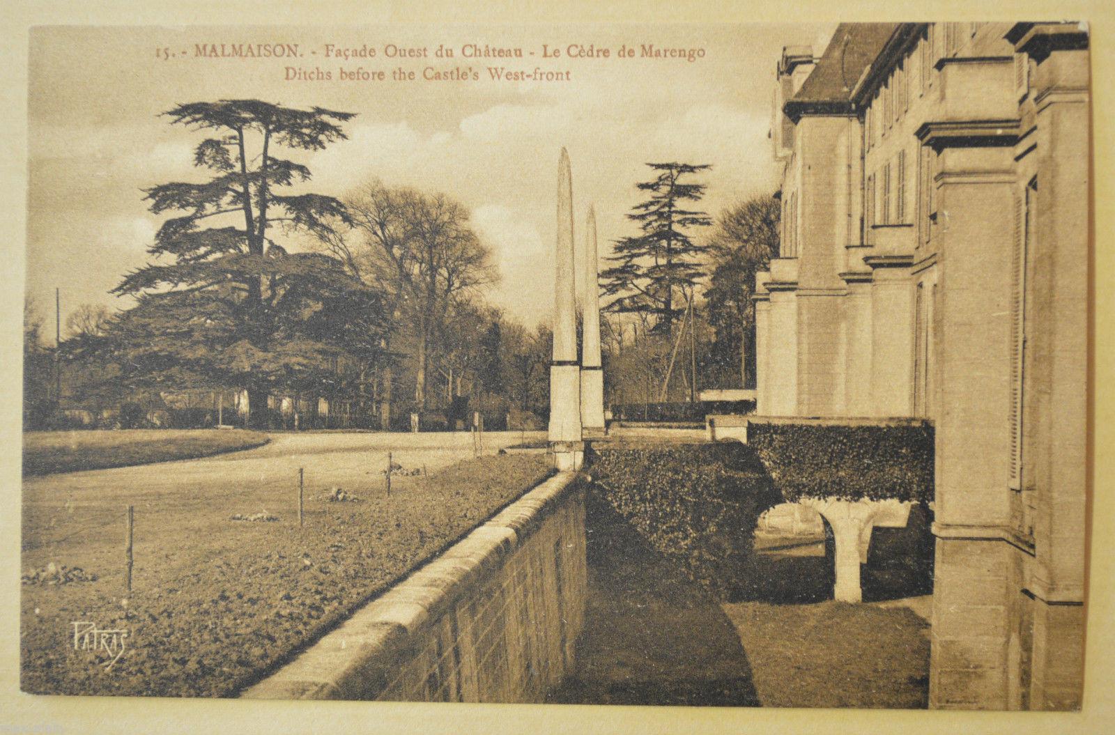 Cèdre de Marengo Rueil-Malmaison, Jean Luard (8)
