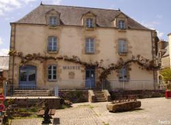 Glycine de Rochefort en Terre, Morbihan Sandra Leparoux (3)