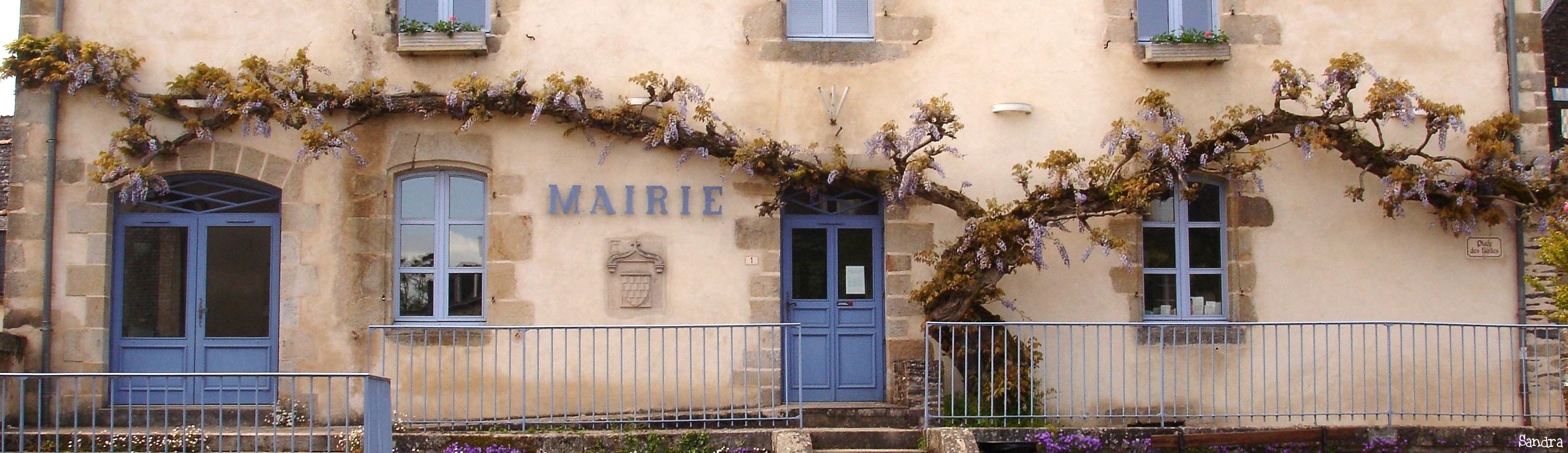 Glycine de Rochefort en Terre, Morbihan Sandra Leparoux (4)