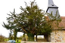 If Saint Laurent des grès Levillain D (2)