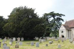 If Sainte Mary church Breamore, Hampshire, Yannick Morhan (2)