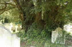 If Sainte Mary church Breamore, Hampshire, Yannick Morhan (3)