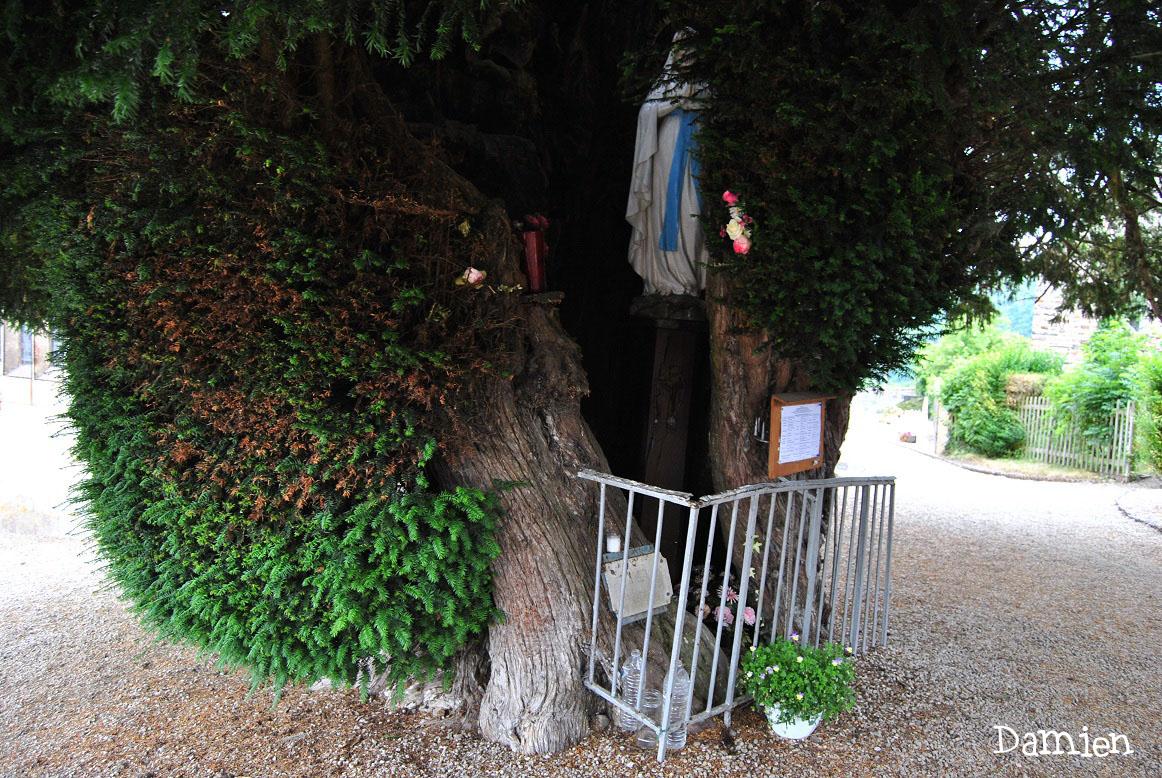 If de Saint Rémy Calvados, Damien Levillain (3)