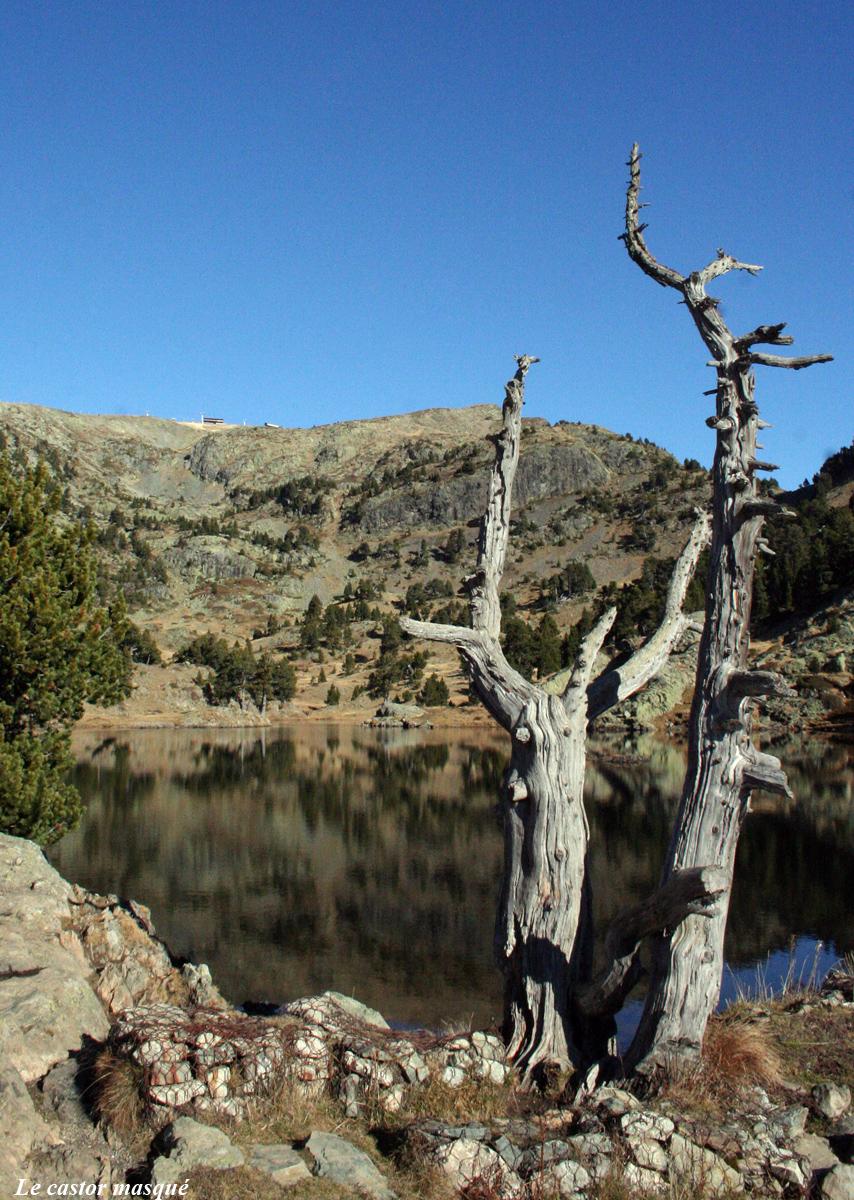 Lac-achard01