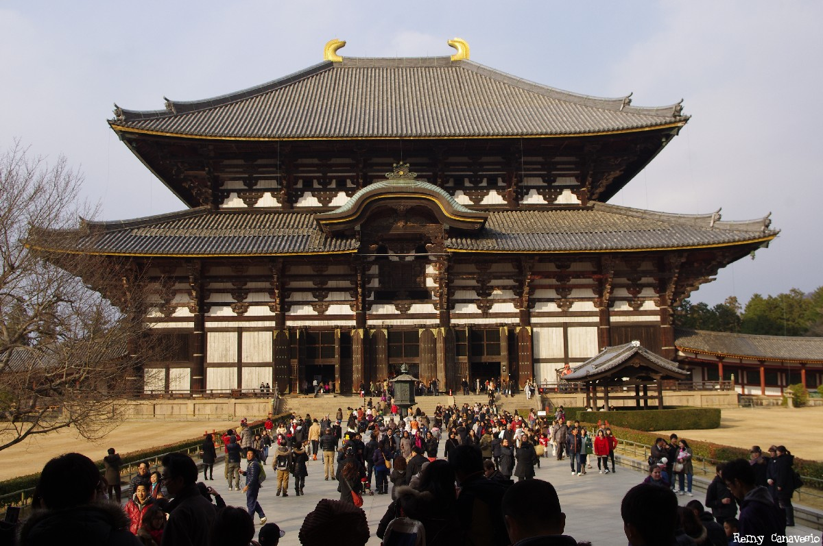 Le temple de Todai-Ji , Japon, Rémy Canvesio