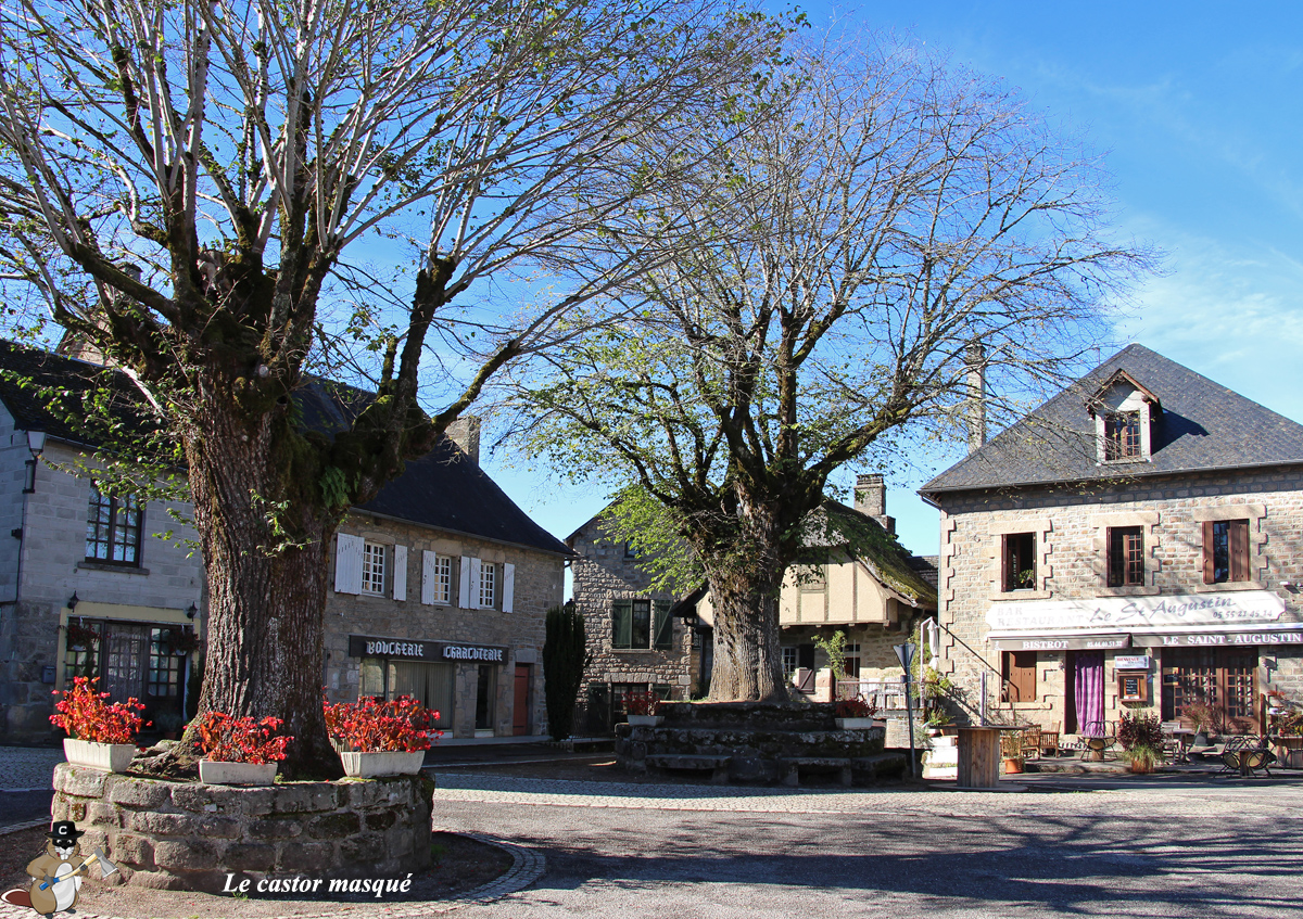 orme-champetre-st-augustin5-c