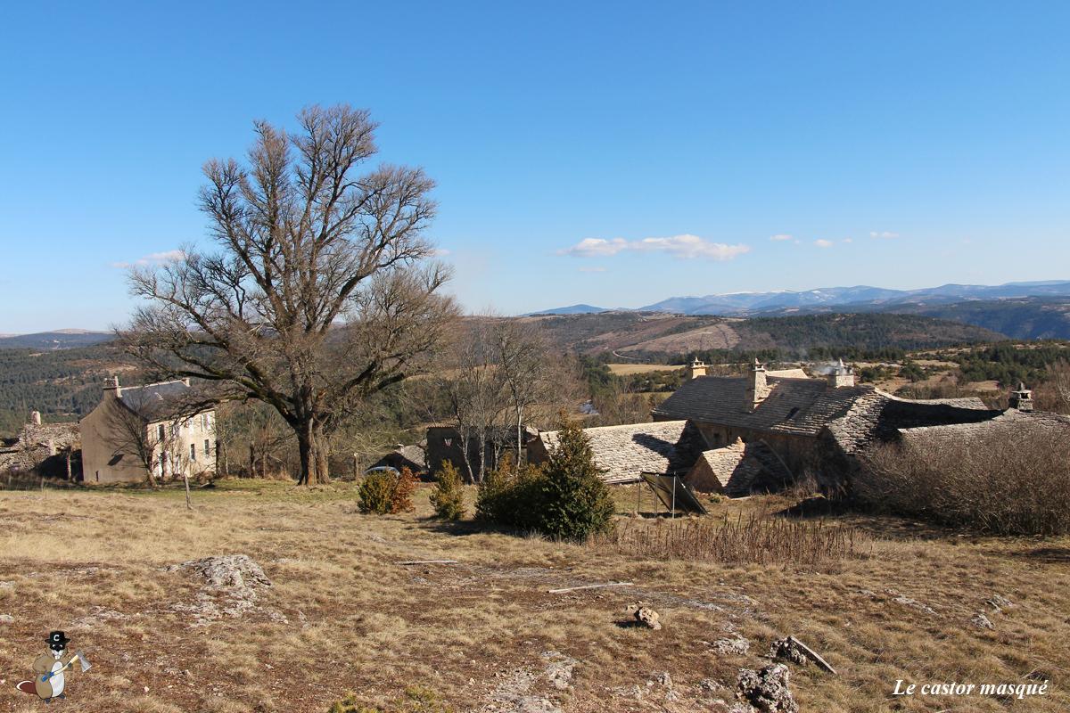 Orme-champetre-st-pierre-des-tripiers06