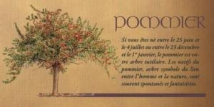 POMMIER