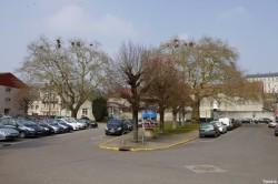 Platanes Place St Nicolas Verdun, Meuse Yannick Morhan (10)