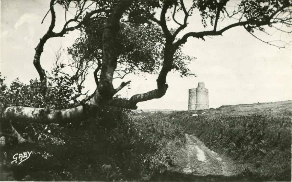 SAINT JACUT DE LA MER - 1948 Au loin la tour des Ebihiens Arbre original