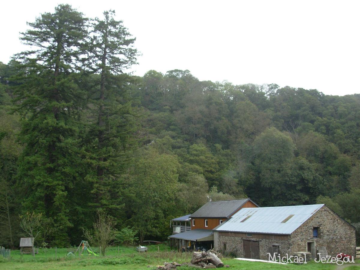 Sequoia Plouec du Trieux Mickael Jezegou