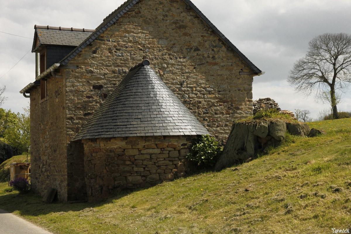 Souche proche du four de la métairie d'en haut, Sévignac, Côtes d'armor, Yannick Morhan