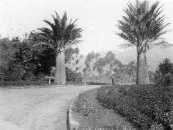 Zona.02.Lotusland-1900s