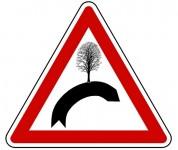 attention arbre
