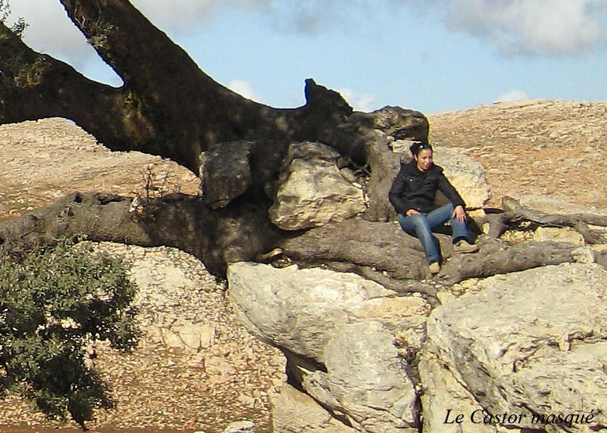 avaleurs-pierres-ain-leuh-maroc4-castor