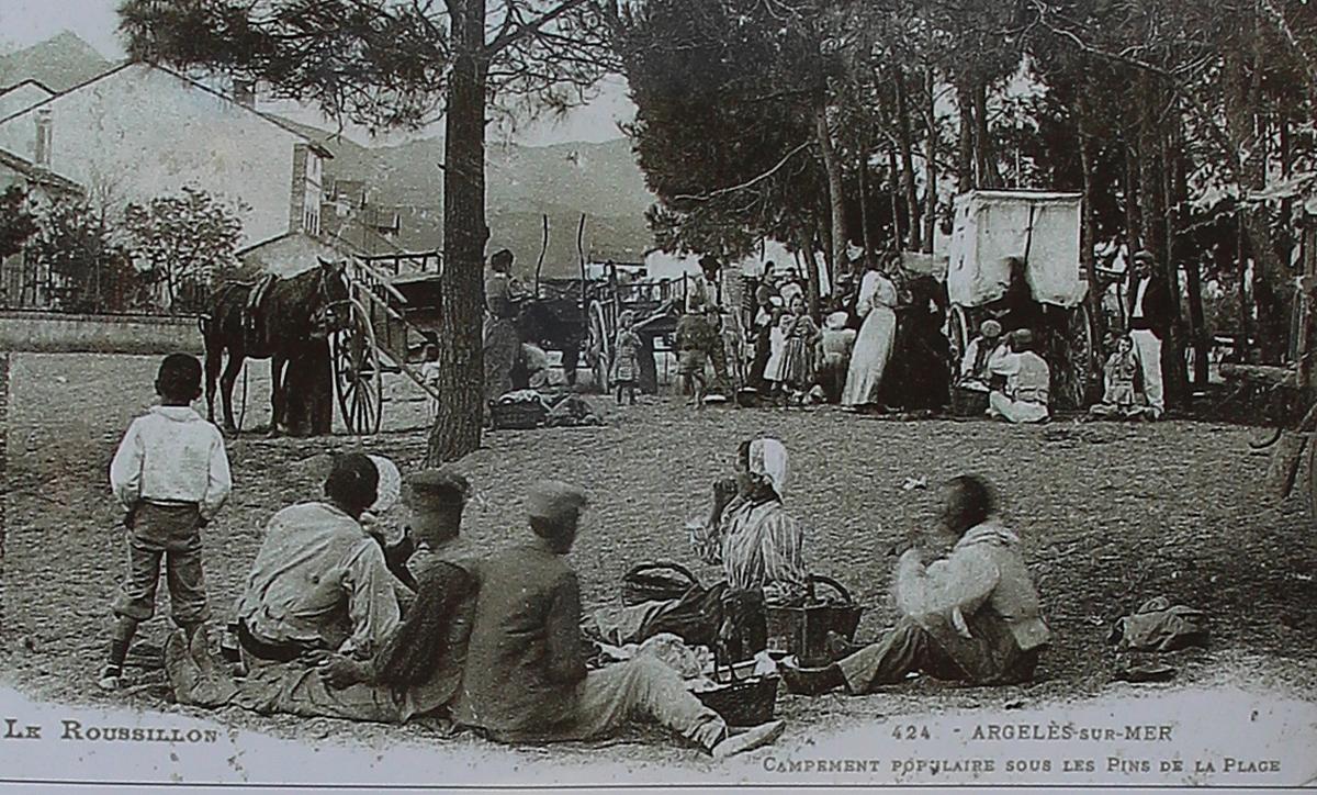 bois-des-pins-argelès4