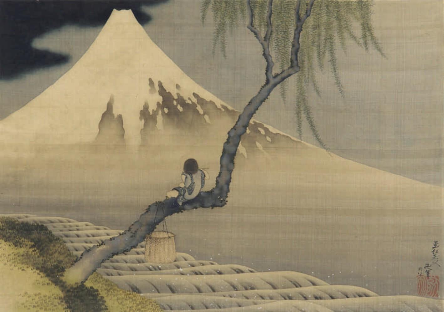garçon et mont Fuji