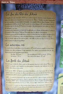 roi-du-mont94