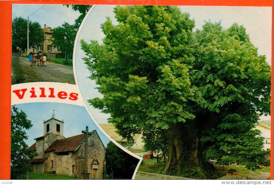 tilleul-villes-delcampe