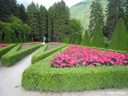 vizille-parc-mai2014-roseraie